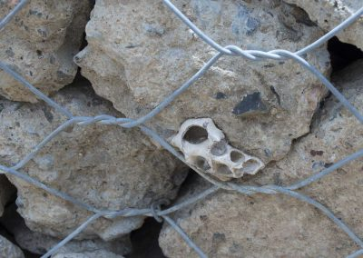 17-Mile-Rocks-Park-gabion-wall_ground-04